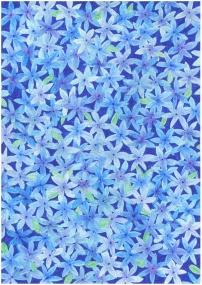 blue-flowers-everywhere